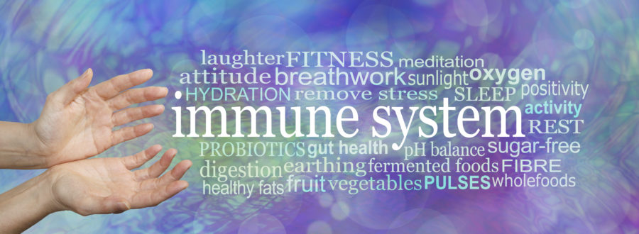 Immune System Strength Guidance Word Cloud - female hands gesturing towards an IMMUNE SYSTEM word cloud on a multicoloured modern abstract medical cellular theme background